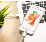 Fabrik-Preis kundenspezifisches USB-Kabel für das aufladende u. Datenübertragung iPhone