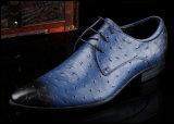 人の服の靴革の方法は人の服靴に蹄鉄を打つ