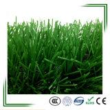 Hierba artificial del césped del balompié natural