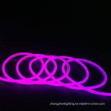 최신 연약한 네온 등 밝은 자주색 가벼운 훈장 빛 110V 8*16mm