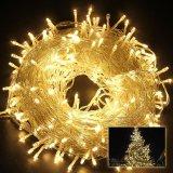 LEIDEN van Kerstmis van het Koord van de Draad van het 10m100LED gelijkstroom 12V Koper Lichte Licht Koord