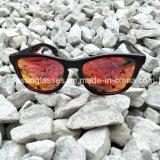 نمو تصميم يد - يجعل سعر رخيصة بلاستيكيّة إطار نظّارات شمس
