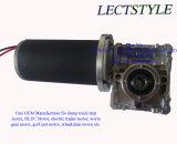 63zy 100W 60rpm 24V DC 벌레 기어 모터
