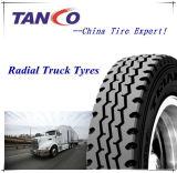 Usa mayorista comercial 315 80R22.5 Neumáticos para Camiones directamente desde China