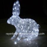 LEDの祝祭ライトショーのための屋外の装飾的な照明モチーフのリスライト