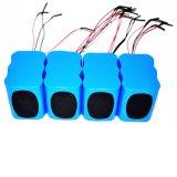 pacchetto della batteria dello Li-ione 12V per l'indicatore luminoso del LED/comitato solare