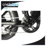 ثلج/شاطئ/جبل نوع 26*4.0 كهربائيّة سمين إطار العجلة درّاجة
