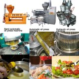 Máquina de la prensa hidráulica de la extracción de petróleo del germen/máquina de la prensa de petróleo del grano de cacao