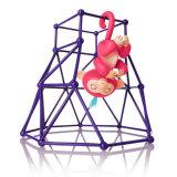 Peixes pequenos Monkey Brinquedos com funções interativas e o multi Colors