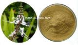 0.2%-2% 4:1 ~20 d'extrait de Sinensetin Orthosiphon Stamineus : 1