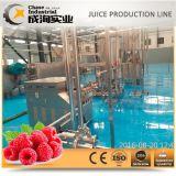 가득 차있는 자동적인 완전한 나무 딸기 주스 생산 라인