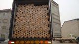 Belüftung-überzogener geschweißter Maschendraht-Plastikzaun für die Herstellung der Befestigungsklammer-Falle