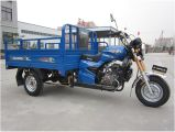 200ccインドの市場のための電気3つの車輪の貨物三輪車