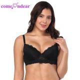 도매 최신 판매 숙녀 섹시한 검정 Strappy t-셔츠 브래지어 5개의 컵 형식
