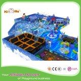 Campo da giuoco dell'interno personalizzato Playsets dalla Cina