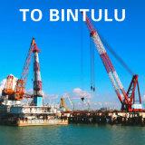 Agente di spedizione certo da Guangzhou alla nave di Bintulu Wanhai