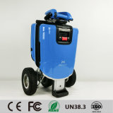 """O """"trotinette"""" elétrico da fábrica de China, o """"trotinette"""" de dobramento o mais novo da mobilidade, forma a bicicleta elétrica, motocicleta elétrica da cidade"""