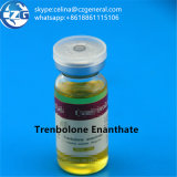 보디 빌딩 Tren 아세테이트 처리되지 않는 스테로이드 CAS: 10161-34-9 Trenbolone 아세테이트