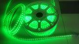 Striscia flessibile chiara verde del segno SMD LED di AC110V LED per Dcoration domestico