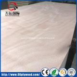 Madeira compensada comercial do folheado de Okoume da fábrica de China Linyi com núcleo de madeira duro