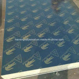 Best Quality Marine Plywood /Film Faced Plywood in Linyi