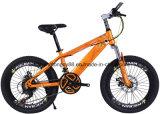 Mt20mhl201 20polegadas bicicletas MTB de aço com velocidade 21