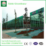 A China Cama plana vertical em hidroponia Hidroponia Sistema de hidroponia em plástico