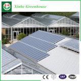 Feste PC Blatt-Gewächshaus-Oberlicht-Seitenscheibe-Polycarbonat-Gewächshaus-Ventilation