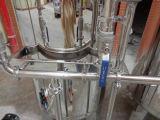 Het Systeem 3000lph van de Omgekeerde Osmose van de Machine van het Membraan van de Filter van het water