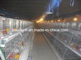 Pequeñas jaulas de batería de la granja de pollo con caliente automático del equipo sumergidas galvanizado (un tipo)