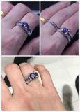 Purpere 5A Zircon 925 Echte Zilveren Ringen van de Trouwring Birthstone