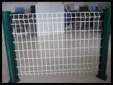 Покрынная PVC сваренная фабрика Китая Anping загородки металла ячеистой сети