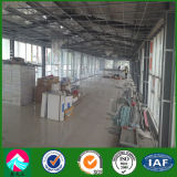 Structure en acier de deux étages Bâtiment de bureau et de magasin