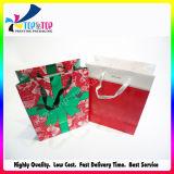 贅沢なハンドル袋の点の紫外線終了する紙袋