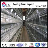 Cages animales de couche de poulet de matériel de ferme avicole avec le modèle professionnel de Chambre de poulet
