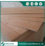 ممتازة درجة واجه ميلامين [أكووم] خشب رقائقيّ تجاريّة لأنّ أثاث لازم [1220إكس2440مّ]