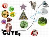 Natur, hartes Büschel, Geruch-Steuertofu-Katze-Sänfte