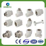 Accessori per tubi della materia prima PPR dell'ottone PPR di alta qualità