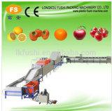 Máquina de classificação da máquina e do peso de classificação do peso do tomate/abacate/laranja/Apple