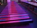 Iluminación de inundación de la luz LED de la arandela de la pared de RGBW LED