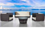 藤の庭の家具のソファーの二重シート