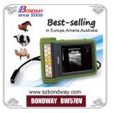 Scanner portatile di ultrasuono per cura degli animali, per i selezionatori bovini, coltivatori, cliniche veterinarie, Reproscan, Ecm, ultrasuono veterinario di Bcf, ultrasonico tenuto in mano