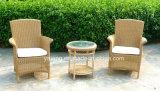 Cadeira de jardim redonda pequena da boa qualidade da mobília de Paito da cadeira do Rattan do PE (YTA026&YTD099-2)