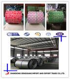 Профессиональные производители из оцинкованной стали Prepainted катушки (PPGL сталь)