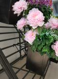 As flores de racks de exibição