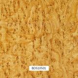 1mwidth Hydrographicsの印刷は屋外項目および車の部品Bds10601のための木パターンを撮影する