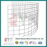 Panneau de clôture de la chèvre/ Metal mouton chèvre Animal Fence/ clôture agricole galvanisé