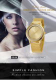 Soem-Herstellungs-weiblicher Armbanduhr-Luxus für Edelstahl-Band-Support T/T, L/C, Western Union, Paypal, Alipay der Frauen-Dame-Brand Belbi Ultra-Thin