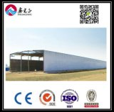 Estrutura de aço personalizados de alta qualidade (Depósito BYSS041)