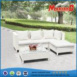 部門別の安い屋外の柳細工の家具の藤のソファー